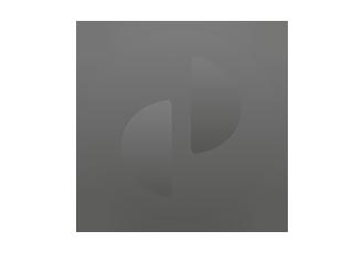 DP-Logo-rund